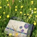 Ausflug auf die Maiblumenwiese 2