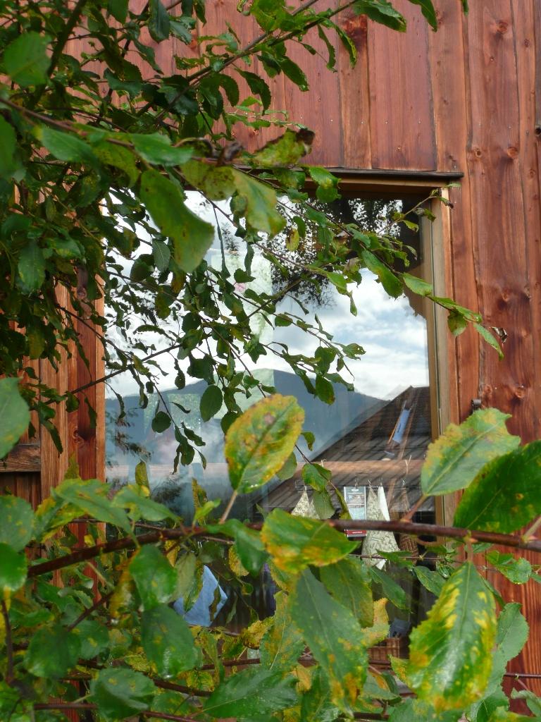 """Unser """"Schaufenster"""", in dem sich der Hochgrat spiegelt."""
