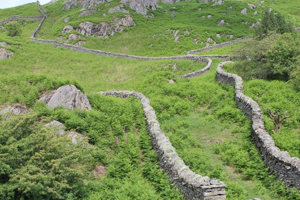 Muster aus Steinmauern